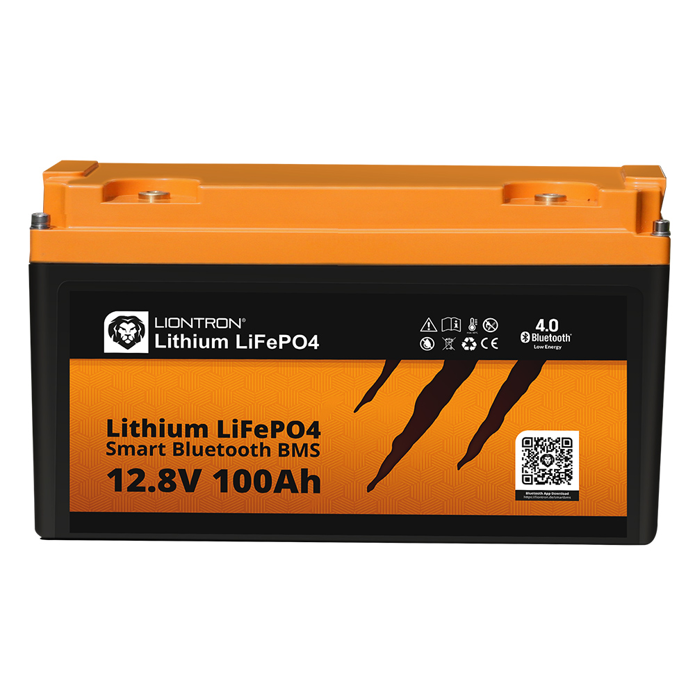 Litio LiFePO4 LX BMS 12,8 V 100 Ah