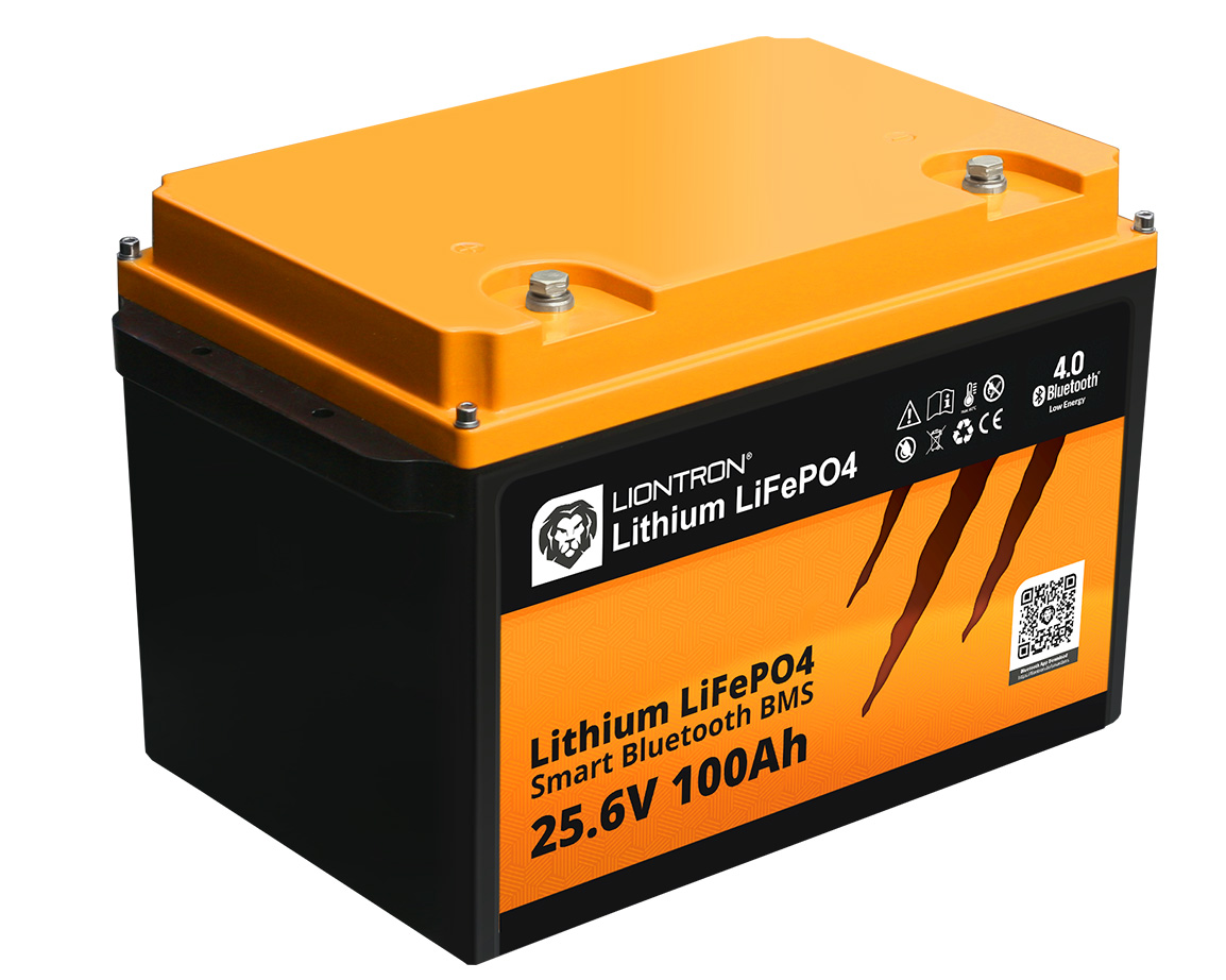 Litio LiFePO4 LX Smart BMS 25,6 V 100 Ah